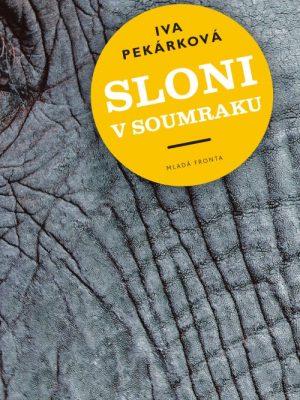 Sloni_v_soumraku_obal
